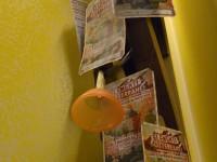 ES2014_VetrineCentro_210_AblD